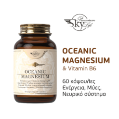 SPL Ocean Magn
