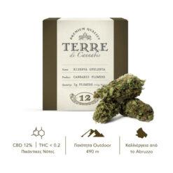 Terre-Di-Cannabis-Santa-Verde-3gr